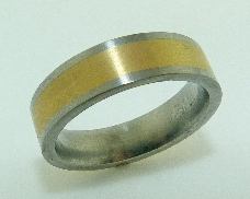 Titanium Mens Band  Two Tone TIT/18k Yellow Gold 6mm size 9.5 Comfort Fit